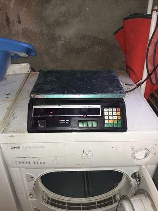 pesa electronica