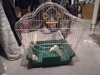 jaula pájaros tamaño normal 40x42