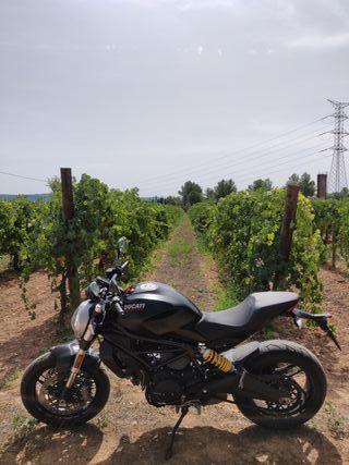 Ducati Monster 797 Dark