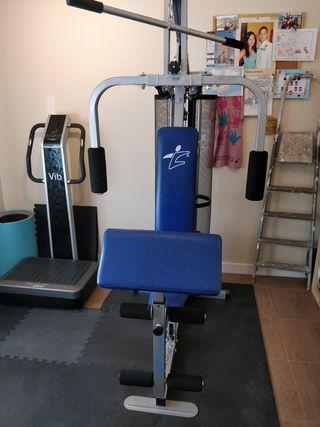 máquina musculación