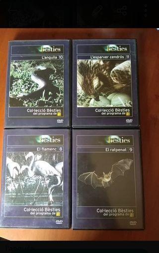 DVD de besties