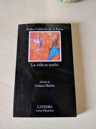 Teatro: La vida es sueño de Calderón de la barca