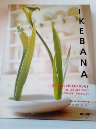 Ikebana un nuevo enfoque de los arreglos florales