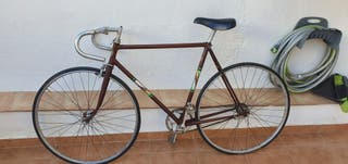 Bicicleta vintage Zeus Alfa singlespeed