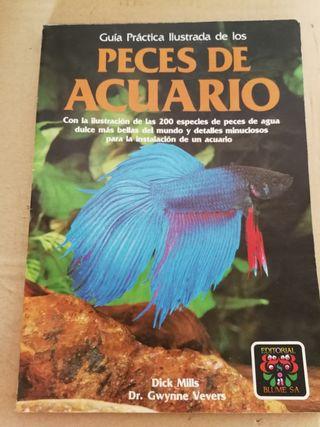 guía peces de acuario
