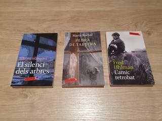 Novel.la ficció