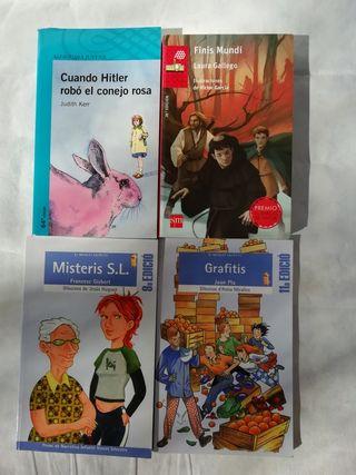 Lectura juvenil