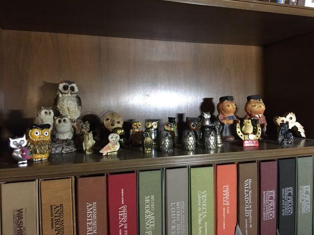 Colección de figuras de búhos