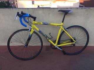 Bici Giant TCR carrera