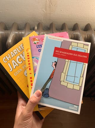 Lot de llibres juvenils