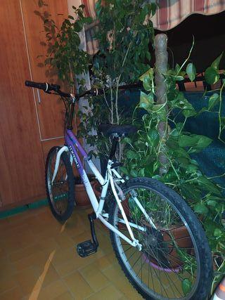 Bicicleta TopBike Teens 24