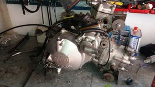 motor aprilia rs 250 y suzuki rgv