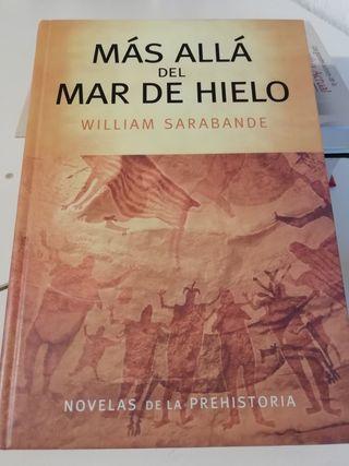 Libro MAS ALLÁ DEL MAR DE HIELO