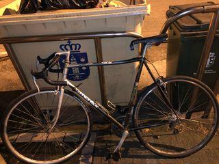 Bicicleta mentor