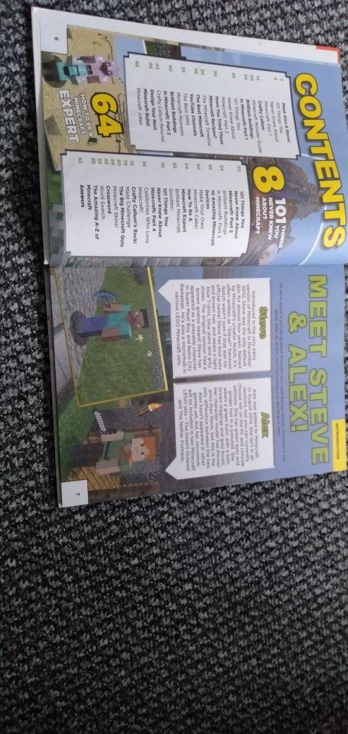 Minecraft secrets & cheats book