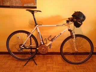 Bicicleta Wheeler