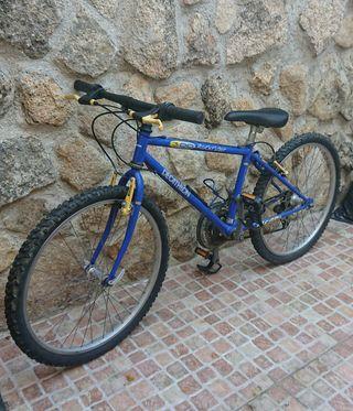 Bicicleta Niño o Niña rueda de 24 pulgadas