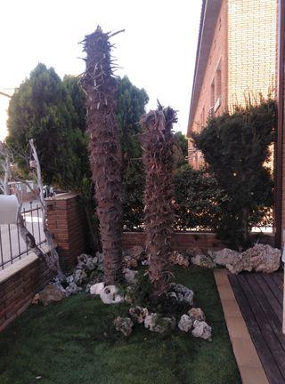 jardinero y jardinería