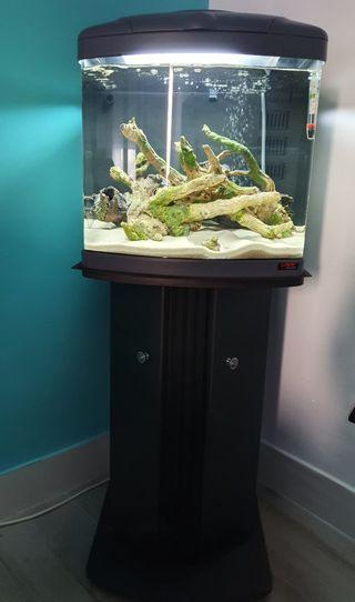 set acuario+mueble+técnica sera precission