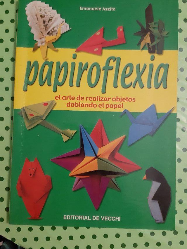 Libro papiroflexia