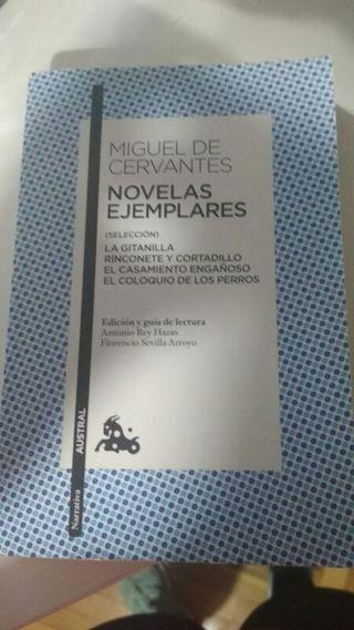 Libro. Miguel de Cervantes. Novelas ejemplare.