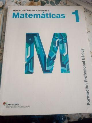 Libro de FPB matemáticas 1