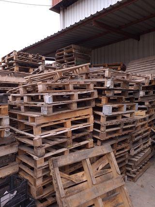 madera madera