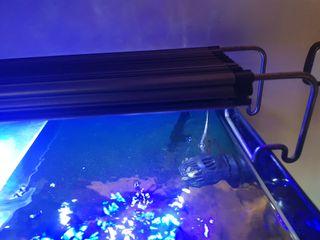 pantalla coral led