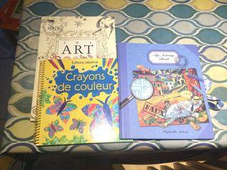 Lote de libros en inglés y francés