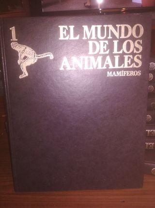 Colección EL MUNDO DE LOS ANIMALES.