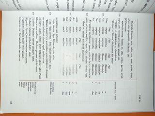 Lingva Latina Libro Latin