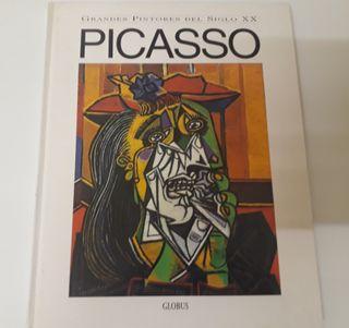 Libro Pablo Picasso Artista Arte Pintura Pintor