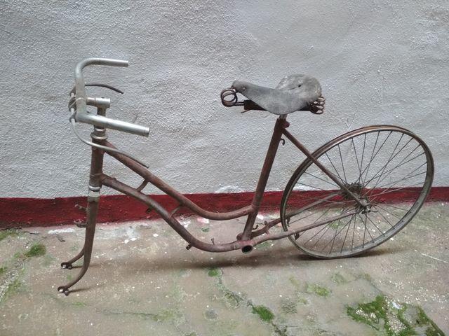 lote bicicletas