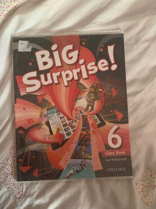 Big surprise libro inglés 6 primaria