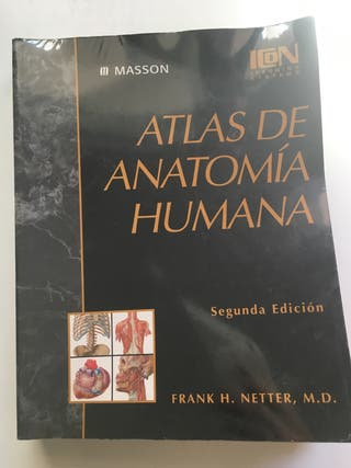 Netter atlas anatomia
