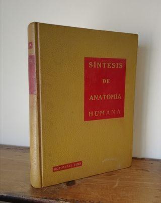 Síntesis de anatomía humana - A. Vega Sala