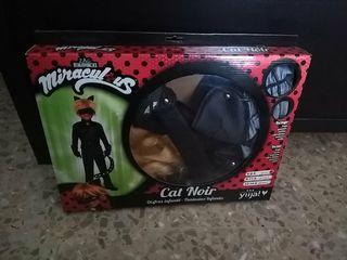 Cat noir