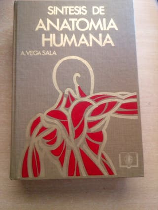 Sintesis de Anatomia Humana