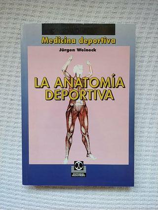 La anatomía deportiva