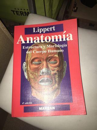 Libro anatomia Lippert