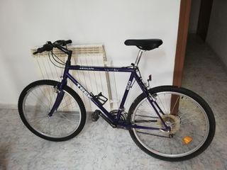 Bicicleta Trek Antelope 850