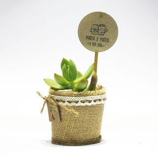 Mini-jardin, recuerdo de boda para invitados