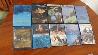 dvd pesca submarina