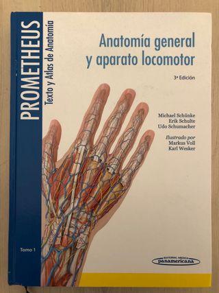 Prometheus: Texto y Atlas de Anatomía.