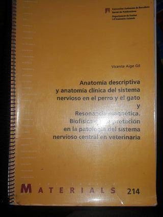 Anatomía descriptiva y anatomía clínica