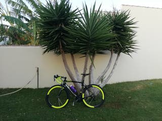 bicicleta vector carbono