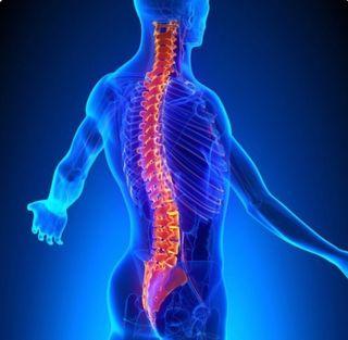 Osteopatía, acupuntura, masajes, biomagnetismo...