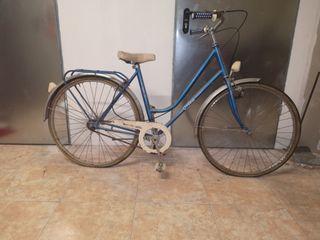 Bici Orbea clasica