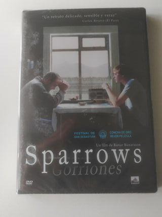 Sparrows. Gorriones