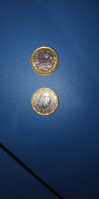 one pound isabelina 2017